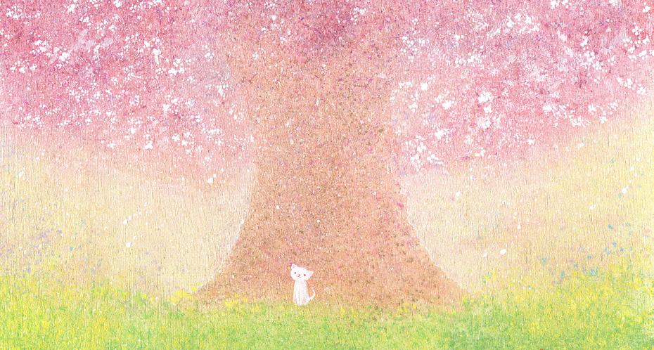 白ネコと桜の木